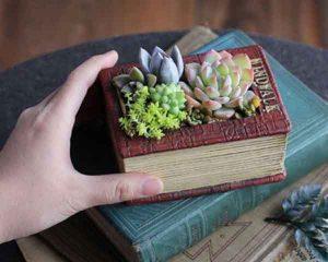 گلدان فانتزی طرح کتاب